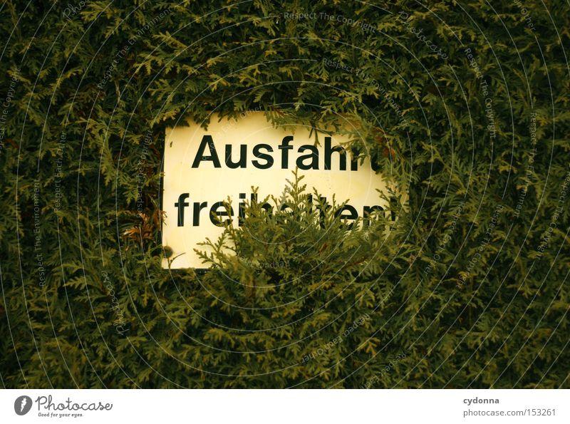 Ausfahrt freihalten! Natur Garten Park Schilder & Markierungen Macht Wachstum Kommunizieren Schriftzeichen Zeichen obskur Hinweisschild Warnhinweis Hecke