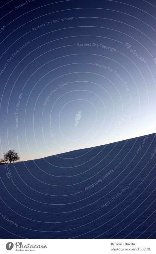 Winter in Bern weiß Baum blau kalt Schnee wandern Schweiz gefroren Mond frieren Verlauf Kanton Bern