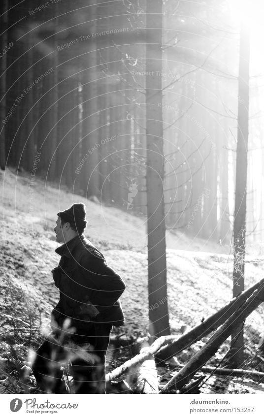 wood delivery Mann Baum Sonne Wald kalt Schnee Holz Luft Eis Nebel Ast Handwerk Arbeiter Beruf Motorsäge Kettensäge
