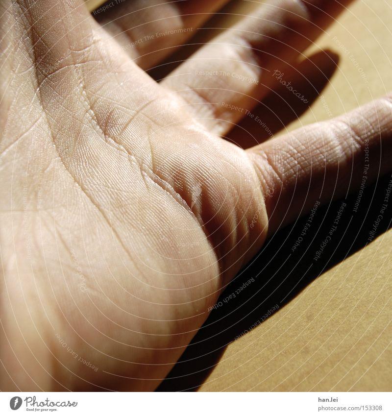 Hand Handfläche Griff fangen greifen Haut Finger Schatten Körperteile Sinnesorgane Gefühle Handwerk Kraft