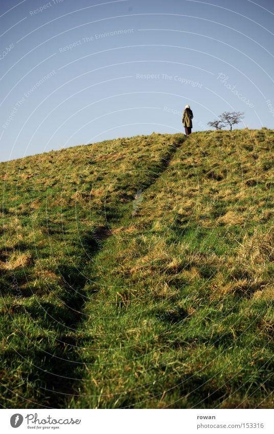 wanderer 3 Baum Landschaft Berge u. Gebirge Wege & Pfade wandern Spaziergang Hügel Spuren Fußweg Märchen Erzählung
