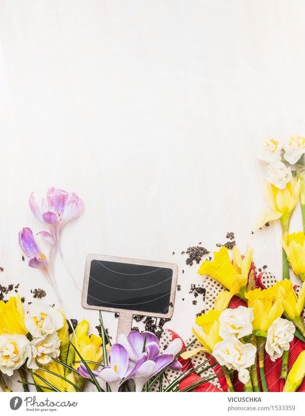 Pflanzen Schild und Frühlingsblumen Natur Sommer weiß Blume Blatt gelb Liebe Blüte Stil Hintergrundbild Garten Design Dekoration & Verzierung