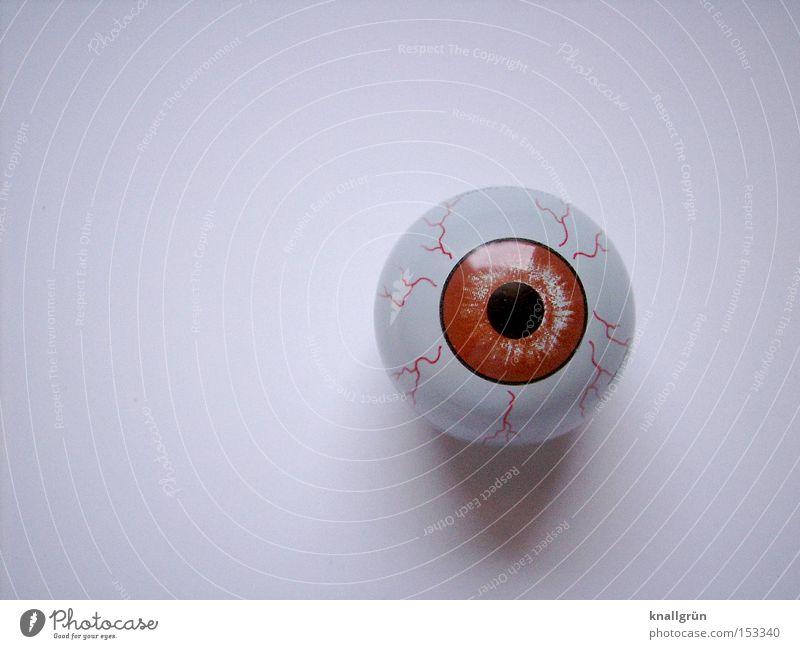 Mad Eye Auge Blick fixieren Pupille glänzend Regenbogenhaut braun Glasauge rund weiß Reflexion & Spiegelung obskur