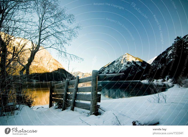 Heiterwanger See I Berge u. Gebirge Alpen Wasser Winter Schnee Eis Zaun Baum Stimmung Einsamkeit kalt Spiegel Bundesland Tirol Österreich Landschaft