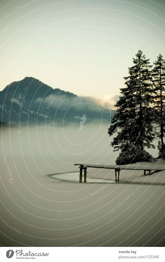 Heiterwanger See II Wasser Himmel Baum Winter Einsamkeit Wald kalt Schnee Berge u. Gebirge Landschaft Eis Stimmung Nebel Frieden Alpen