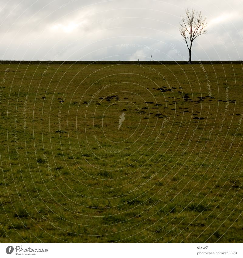 MaulwurfCity Himmel Baum Winter ruhig Einsamkeit Herbst Wiese Feld Wetter frei Horizont Erde trist Langeweile Maulwurf