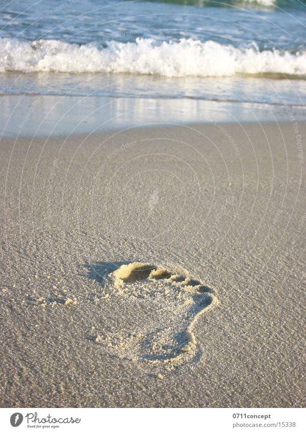 Towards the Sea Meer Erholung Sand Spaziergang Spuren Fußspur