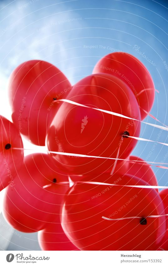 Love Balloons II Luftballon rot blau Glück Geborgenheit Vertrauen Sommer Himmel. fliegen