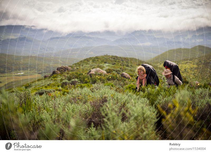 Besteigung Mt. Kenya Freizeit & Hobby wandern Bergsteigen Ferien & Urlaub & Reisen Tourismus Ausflug Abenteuer Ferne Expedition Camping Berge u. Gebirge Mensch