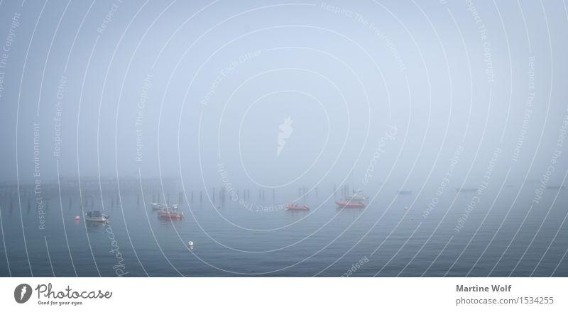 Swanage Mist Natur Landschaft Nebel Küste Meer Atlantik Europa Idylle Ferien & Urlaub & Reisen ruhig träumen England Großbritannien Isle of Purbeck mystisch