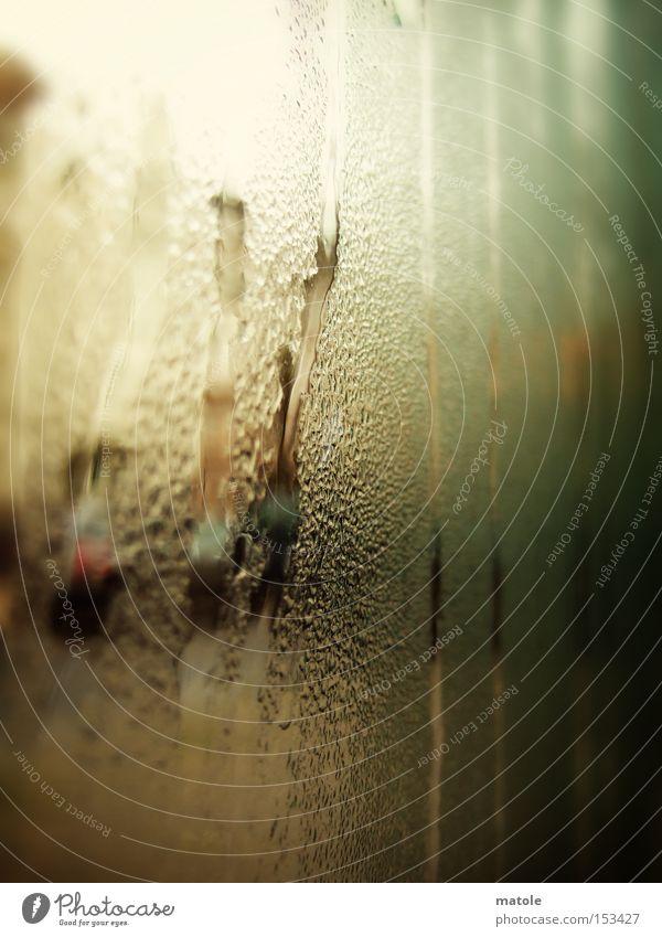 BESCHLAGEN Wassertropfen feucht kalt Glasscheibe trüb Unschärfe unklar Detailaufnahme Makroaufnahme Nahaufnahme Regen Langeweile Herbst gelehrt