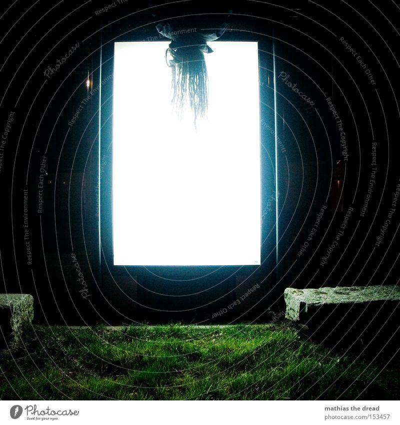 BLN 08 | UPSIDE-DOWN I Mann weiß schwarz oben Haare & Frisuren Rasen Klettern Quadrat skurril hängen Geometrie verkehrt