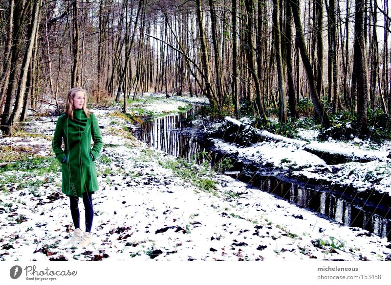 am bach. grün weiß Schnee Bach Mantel Wald träumen Baum Winter links Sehnsucht schön
