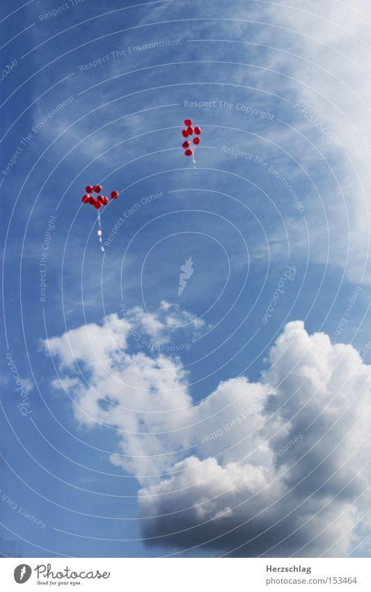 Love Balloons III Himmel blau Wolken Ferne Glück Zufriedenheit fliegen hoch frei Luftverkehr Luftballon Wunsch Ehe
