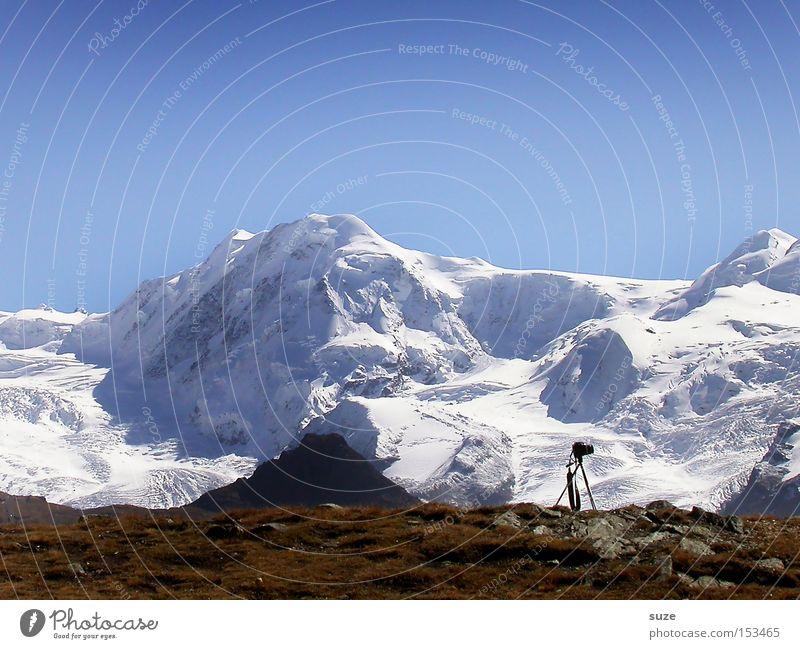 Wo ist das Vögelchen? Himmel Natur blau Ferien & Urlaub & Reisen weiß Winter Landschaft Umwelt Berge u. Gebirge kalt lustig Luft braun außergewöhnlich groß