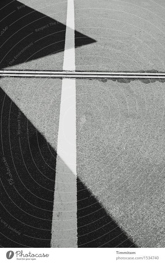 s/w | Motivsache. Verkehrswege Linie ästhetisch eckig grau schwarz weiß Asphalt Fuge Dreieck Perspektive Schwarzweißfoto Außenaufnahme Menschenleer Tag Schatten