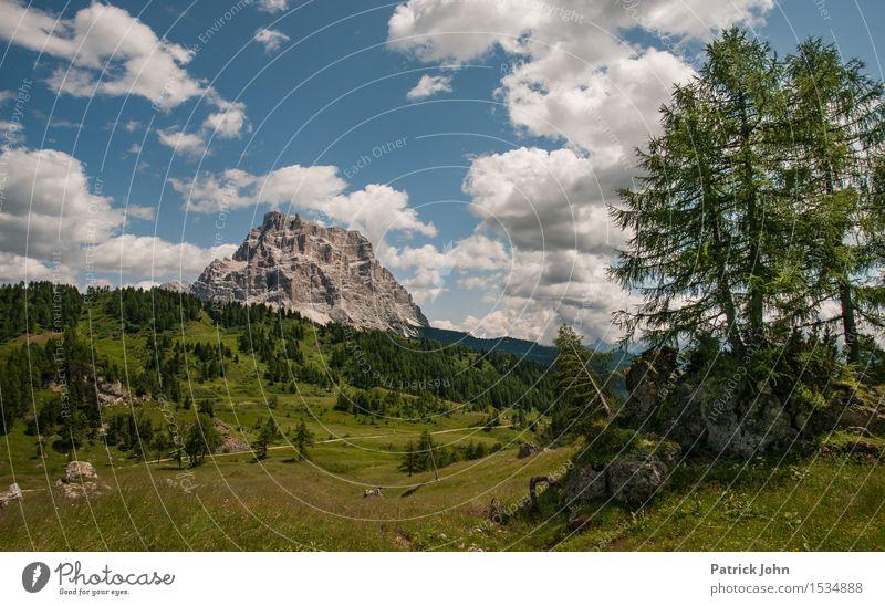 Dolomiten Himmel Natur Ferien & Urlaub & Reisen Pflanze blau grün Sommer Baum Landschaft Wolken Tier Berge u. Gebirge Umwelt Bewegung Gras Felsen