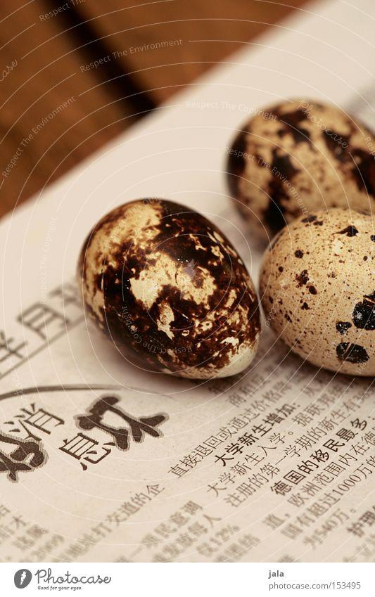 4 minuten: hart Holz klein Vogel Lebensmittel Ernährung Tisch Gastronomie Zeitung China Ei Asien Vogeleier Delikatesse Feinschmecker winzig Medien