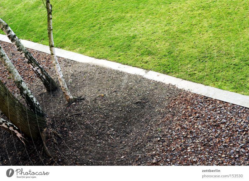 Südgelände Baum Landschaft Wiese Gras Stein Garten Park Ecke Rasen Sportrasen Grenze Kies Gartenarbeit Gartenbau Kieselsteine Birke