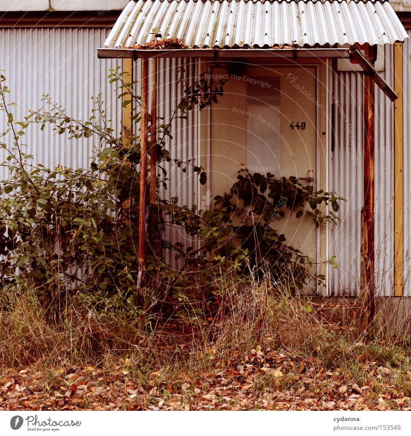 Gärtner gesucht! Natur Haus Einsamkeit Tür Zeit retro Vergänglichkeit verfallen Vergangenheit Eingang DDR Nostalgie altmodisch Leerstand unbenutzt Ostalgie