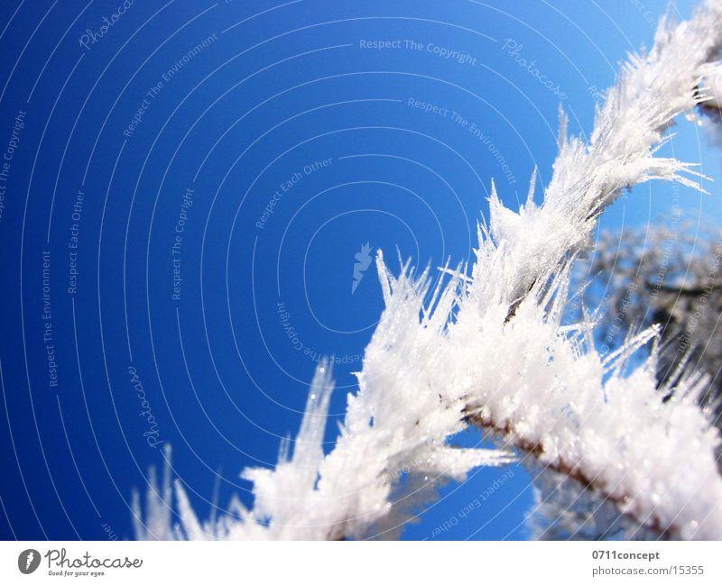 Eiskristalle 03 Winter kalt gefroren Horizont Ferien & Urlaub & Reisen Winterurlaub Winterstimmung Eiszeit Jahreszeiten Eindruck Grad Celsius leer unten