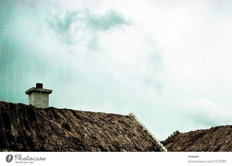 dachlandschaft Gras Dach Republik Irland altmodisch organisch Riedgras Reetdach