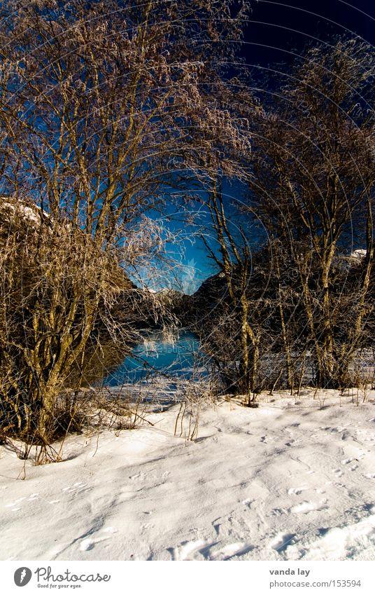 Heiterwanger See V Natur Wasser Himmel blau Winter Einsamkeit kalt Schnee Berge u. Gebirge See Landschaft Umwelt