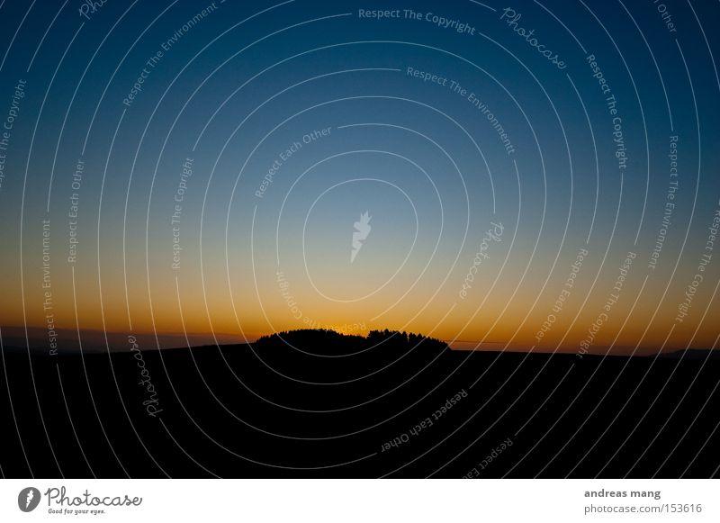 sunset Baum Dämmerung Natur Abend Abenddämmerung Wäldchen Hügel Sonnenuntergang Farbverlauf kalt dunkel Bergkuppe Wald