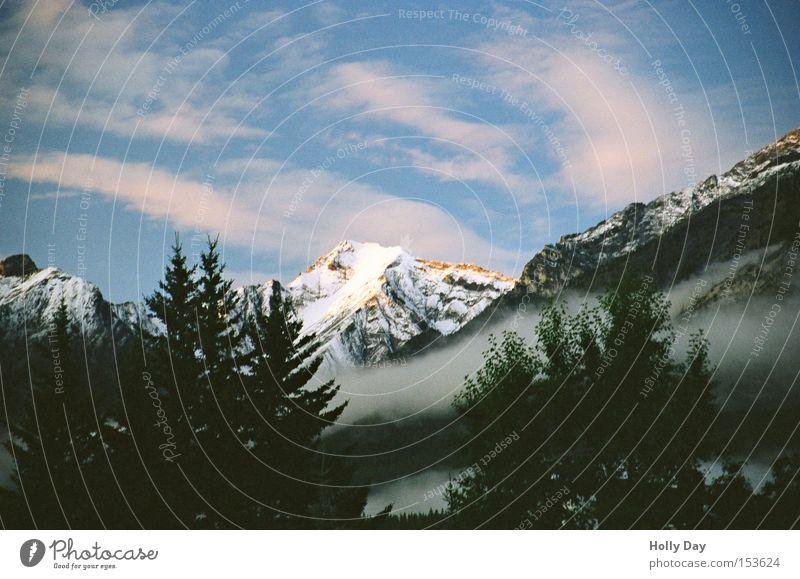 Nebel, Nebel und ein Lichtblick Himmel Wolken Wald dunkel Schnee Berge u. Gebirge orange Spitze Gipfel Sonnenaufgang Kanada Gegenteil Rocky Mountains