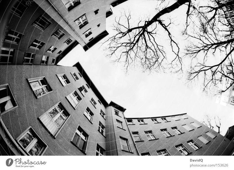 but the world goes round... Ecke Hinterhof Block Altbau Haus Stadthaus Fassade Fenster Baum Himmel Fischauge Schwarzweißfoto Orthochrom 25 ASA 16mm