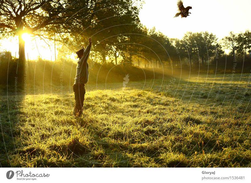 Drachenhuhn Mensch Jugendliche Mann grün Sonne Tier 18-30 Jahre Erwachsene gelb Wiese Bewegung Garten Freiheit fliegen maskulin Park