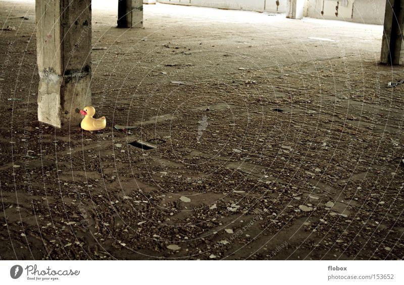 Versteck-Spiel alt Einsamkeit gelb Stein Vogel Beton Industrie Fabrik verfallen Spielzeug schäbig Lagerhalle gefangen Halle Ente Justizvollzugsanstalt