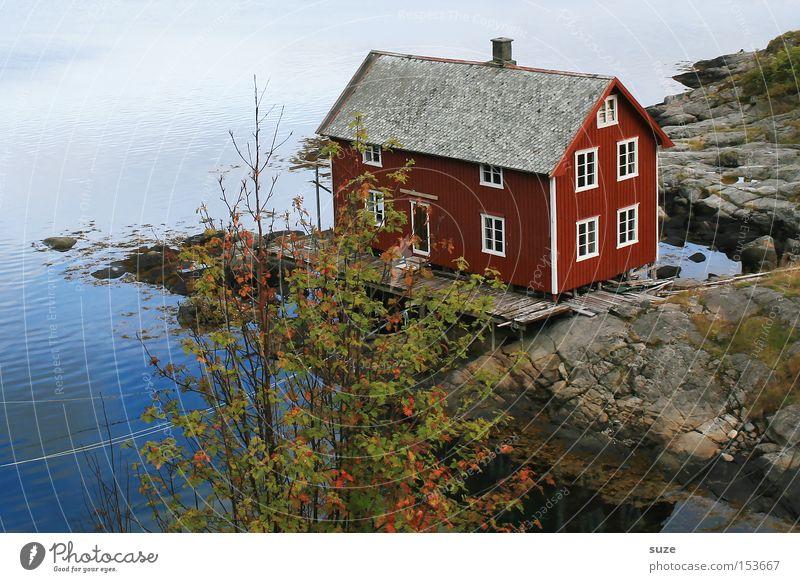 Traumhaus Erholung ruhig Meer Umwelt Natur Landschaft Urelemente Felsen Küste Fjord Haus Hütte rot Einsamkeit Idylle Norwegen Skandinavien Ferienhaus Bootshaus