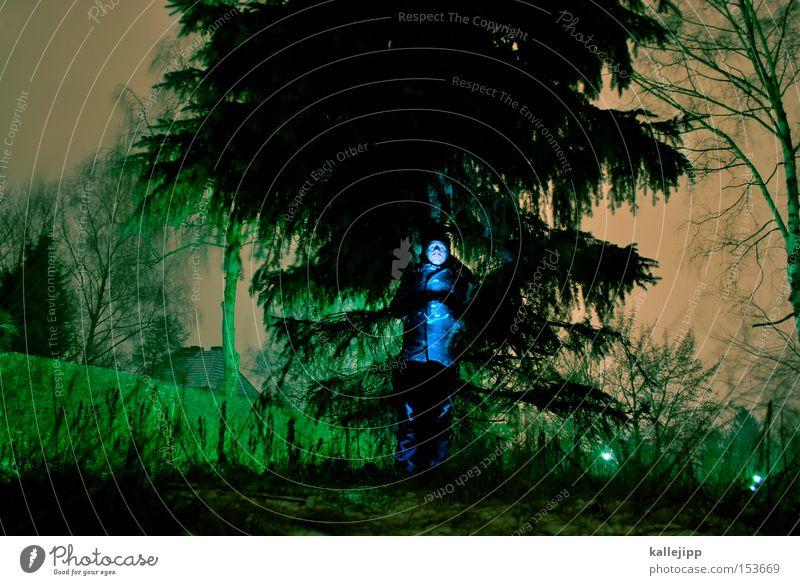 ein männlein steht im walde Mensch Mann Wald Tanne Forstweg Frost frieren Forstwirtschaft Baum Nacht Licht Natur Baumstamm Zweig Nadelbaum Langzeitbelichtung