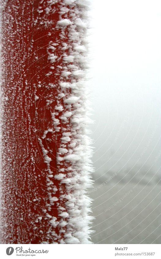 Nicht dran lecken Eisen Frost Kristallstrukturen Schnee kalt Pfosten gefroren rot weiß erstarren Unschärfe Kontrast Winter