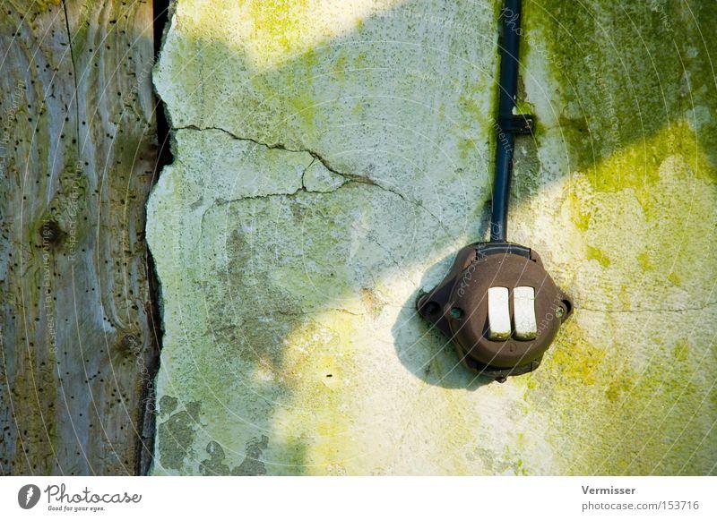 """""""Hasenzähnchen"""" weiß grün Holz braun Kabel verfallen Wohnzimmer Ruine Moos Putz Schalter Balken"""