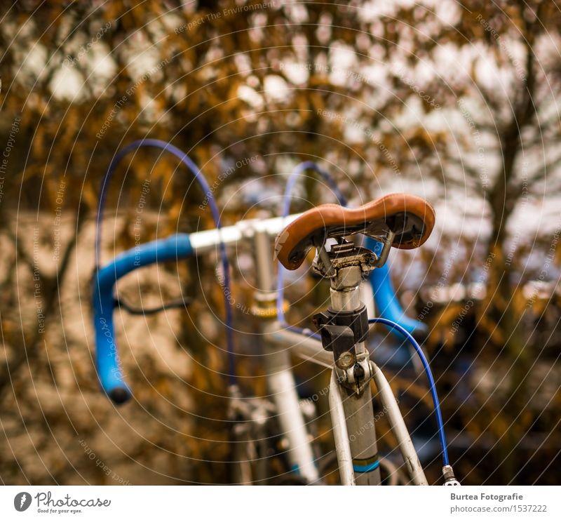 Vintage Fahrrad Stahl blau braun silber Farbfoto Außenaufnahme Tag Licht Unschärfe Rückansicht