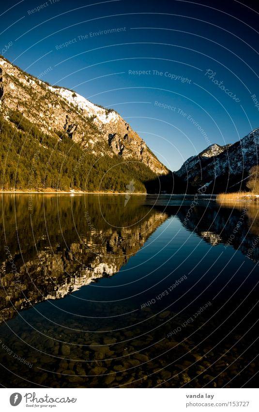 Heiterwanger See VI Berge u. Gebirge Alpen Reflexion & Spiegelung Wald Eis Schnee kalt Winter wandern Ferien & Urlaub & Reisen Himmel blau Tanne Macht