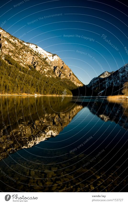 Heiterwanger See VI Himmel blau Winter Ferien & Urlaub & Reisen Wald kalt Schnee Berge u. Gebirge Eis wandern Macht Alpen Spiegel Tanne