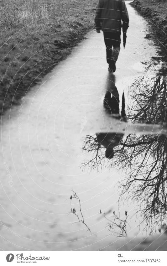unbekannter und spiegelung Mensch Natur Mann Wasser Baum Erwachsene Umwelt Leben Herbst Wiese Wege & Pfade Bewegung gehen maskulin Wetter Freizeit & Hobby