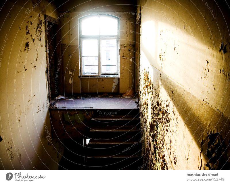 A NICE ONE schön alt Farbe Fenster Farbstoff Linie Raum dreckig leer Industrie Treppe schäbig platzen Lichteinfall