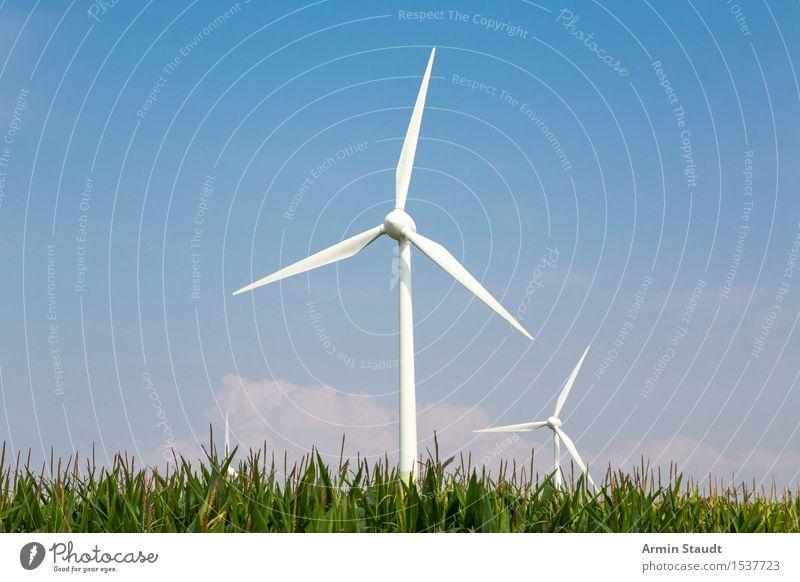 Windkraft Lifestyle Design harmonisch Ferne Freiheit Sommer Umwelt Natur Landschaft Luft Himmel Feld Maisfeld Ackerbau Kraft innovativ Überleben Windkraftanlage