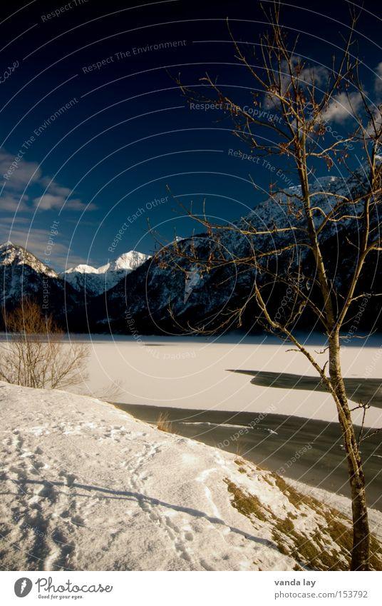 Heiterwanger See VII Himmel Baum Winter kalt Schnee Berge u. Gebirge Spaziergang Frieden gefroren Fußspur bedeckt