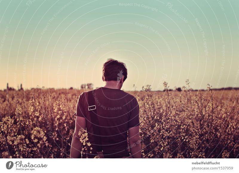 Rapsfeld Mensch Jugendliche Pflanze Junger Mann 18-30 Jahre Erwachsene Umwelt gelb Leben Blüte Stimmung maskulin träumen frei Körper wandern