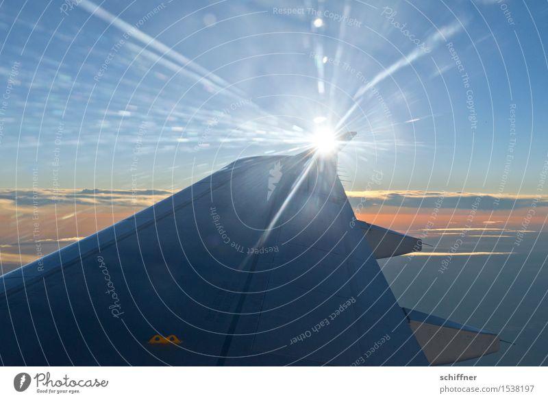 Sonnenflügel III Himmel Ferien & Urlaub & Reisen blau Erholung Wolken Ferne Freiheit Luftverkehr Schönes Wetter Flugzeug Flugangst Strahlung Passagierflugzeug