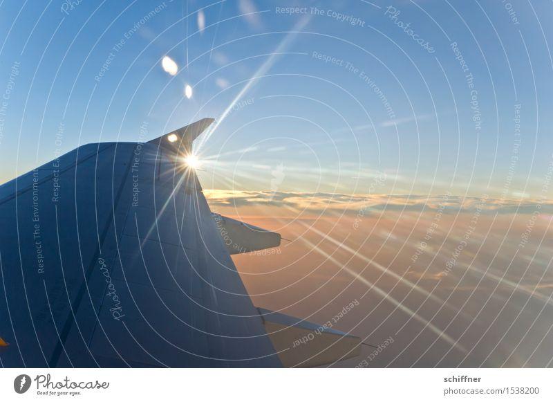 Sonnenflügel II Himmel Ferien & Urlaub & Reisen blau Wolken Reisefotografie orange Luftverkehr Klima Schönes Wetter Flugzeug Tragfläche Flugangst