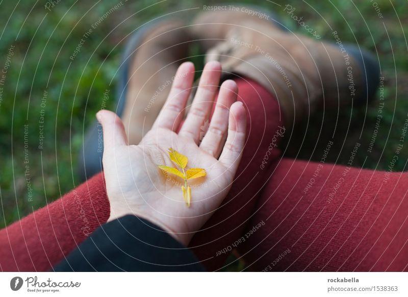 Laubblatt auf Handfläche Herbst Blatt gelb Geborgenheit Farbfoto Außenaufnahme Schwache Tiefenschärfe