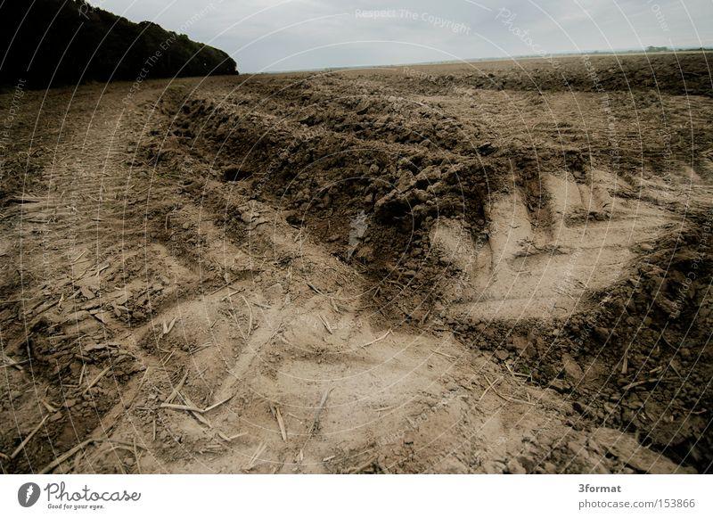 acker Feld Baustelle Spuren Ebene Steppe Landwirtschaft Ernte alt Reifen Fußspur Aussaat Ödland Wüste Abend Vergänglichkeit Erde Sand Abdruck Reifenspuren