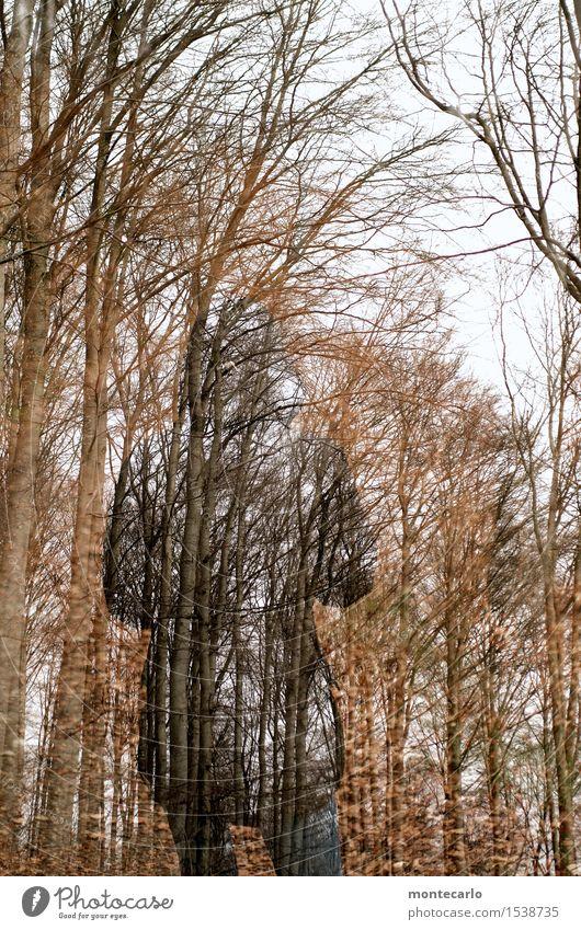 experiment | waldgeist 1 Mensch Umwelt Natur Pflanze Luft Herbst Winter Wetter schlechtes Wetter Baum Blatt Grünpflanze Wildpflanze Wald Bekleidung Hose Jacke
