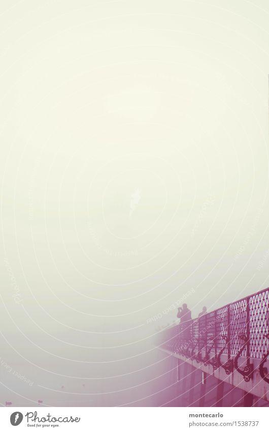 die brücke.... Mensch maskulin feminin Umwelt Natur Luft Herbst Klima Wetter schlechtes Wetter Nebel See Brücke Brückengeländer Brückenpfeiler Stein Beton